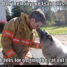 Don't tell anyone I said this...but thanks for getting the cat out