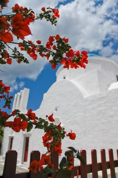 Red and white! Greece Vacation, Greece Travel, Santorini Greece, Mykonos, Greece Tours, Ancient Myths, Greece Islands, Holiday Destinations, Inspiration