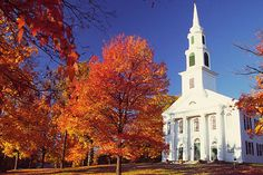 New England in the fall. Wayne and I have wanted to do this for 20 years.