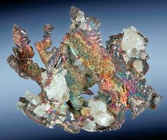 Iridescent Native Silver leaves and crystals with Calcite. From the Dolores Mine, near Copiapo, Atacama Province, Chile.