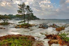 Tuulinen ranta - meri Suomenlahti syksy tuuli myrsky ranta sade lokakuu Porkkalanniemi maisema merimaisema Itämeri