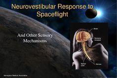 aerospace medicine - Google Search