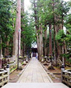 koyasan - Koyasan cemetery - Japan
