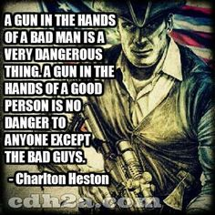 http://www.sonsoflibertytees.com/patriotblog/gunsrights