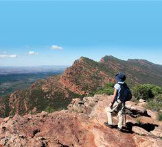 Hiking Wilpena Pound, Australia. Photo by Paul           #monogramsvacation