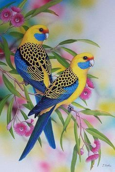 """""""Yellow Rosellas"""" by Lyn Cooke. Paintings for Sale. Bluethumb – Online Art Galle… """"Yellow Rosellas"""" by Lyn Cooke. Paintings for Sale. Most Beautiful Birds, Beautiful Roses, Animals Beautiful, Beautiful Flowers Wallpapers, Beautiful Nature Wallpaper, Cute Birds, Pretty Birds, Funny Birds, Exotic Birds"""