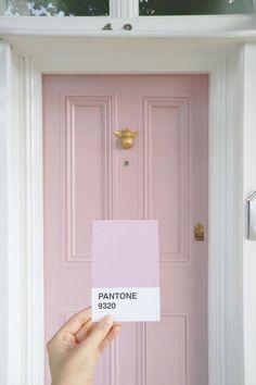 Pantone pink. #pantone #pantonecolors