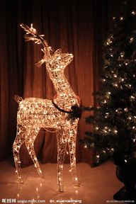 Christmas lights Tasteful decorations   #ThingsWeDo #EagleHomeRenovations