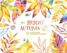 Bright Autumn. 28 Watercolor Elements handpainted by OctopusArtis