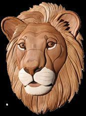 Classroom in a Tube - Lion - Intarsia - Judy Gale Roberts Studio.......seen Lions have a more realistic look to them