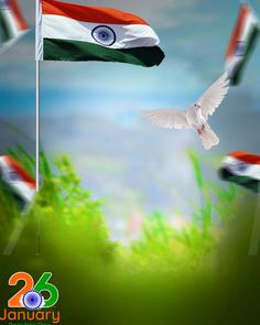 Independence Day Wallpaper, Independence Day Background, Happy Independence Day India, Photo Background Images Hd, Background Images For Editing, Editing Photos, Background Wallpaper For Photoshop, Picsart Background, Car Backgrounds