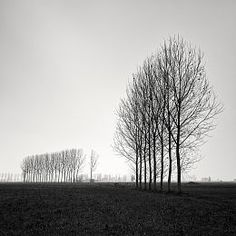 All In A Row by Pierre Pellegrini