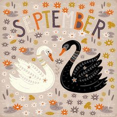 Folk art septemper calendar black and white swan Calendar Wallpaper, Iphone Wallpaper, September Wallpaper, Hello September, September Calendar, Scandinavian Folk Art, Autumn Scenes, Cute Illustration, Illustration Fashion