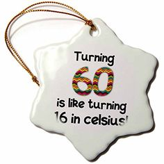 "3dRose orn_184962_1 Turning 60 is Like Turning 16 in Celsius Humorous 60Th Birthday Gift Snowflake Ornament, Porcelain, 3"" -- Amazing deals just a click away : Christmas Home Decor"