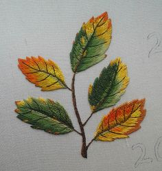 Welcome to part four and we start with part of the outlining of the fifth leaf (and some lovely sheen on the silk threads). This was ...