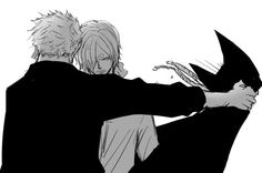 One Piece ~ Zoro, Sanji ~ I don't ship them, but this is kinda cool.