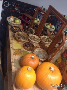 "Autumn Table - from Rachel ("",)"