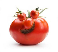 It's funny how people see things. I wonder if I would have looked at this tomato the same way?