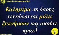 True Words, Mornings, Good Morning, Jokes, Mood, Humor, Funny, Life, Buen Dia