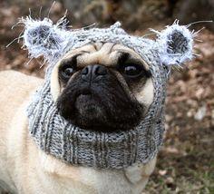 b665887004f Baby Koala Dog Hat - Pug Hat - Pug Hats - Dog Clothing - Pet Cloting - Dog  Costume - Dog Hats - All You Need is Pug®