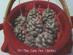DIY Pine Cone Fire Starters -- A super easy and fun diy gift for all your fire loving friends. #diy #pinecone #firestarter