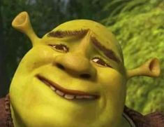 hopeing something that will never come true Funny Profile Pictures, Funny Reaction Pictures, Meme Pictures, Memes Shrek, Dankest Memes, Shrek Funny, Stupid Funny Memes, Funny Relatable Memes, Hilarious