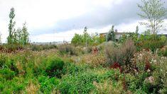 Sla :: Ny Naturorden - Fredericia C
