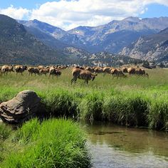 Top Rocky Mountain National Park Attractions - Sunset