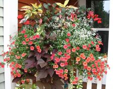 A very unique container, a planter box for the rail of your deck, patio or porch that comes with either a 2x4 or 2x6 opening on the bottom so you can just sit it right over the rail...no hangers, brackets or screws! This one is planted up with watermelon geraniums, sweet caroline red sweet potato vine, diamond frost, solar coleus, upright fushia, diascia, superbells, copperleaf and leatherleaf grass.