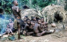 Pygmäen Frauen Zentralafrikanische Republik Lobaye