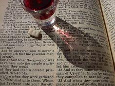 Sunday Scripture: 1/12/14 - Renewed Daily