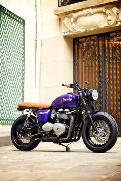 Triumph, great looking