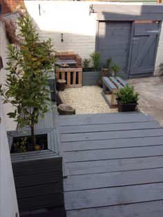 Back yard. Scaffold boards for fence and decking.