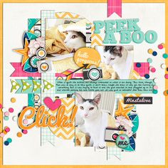 Cindy's Layered Templates - Set 167 by Cindy Schneider Lemme Take A Selfie by Jady Day Studio