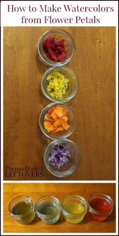 How make watercolor paints from flower petals - Fun art project to do with kids