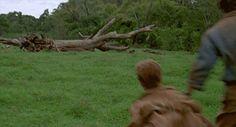 "Esta toma descartada.   36 Cosas que todo fanático de ""Jurassic Park"" apreciará"
