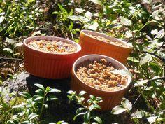 Finnish Blueberry Rooster - Mustikkakukko - Rättänä Traditional Finnish Recipes - Lady's baking Lair