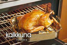 kalkkuna ~ turkey
