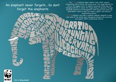 Elephant WWF Typography Poster by pagiee1996.deviantart.com on @DeviantArt