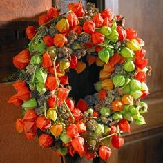 All-rounder Physalis: Info and decoration ideas for the lantern flower- Alleskönnerin Physalis: Info und Dekoideen zur Lampionblume BLOOM's / decorating with flowers and plants: we will show you creative ideas to make yourself - Diy Wreath, Door Wreaths, Autumn Wreaths, Christmas Wreaths, Diy Christmas, Chinese Lanterns Plant, Corona Floral, Pumpkin Wreath, Deco Floral