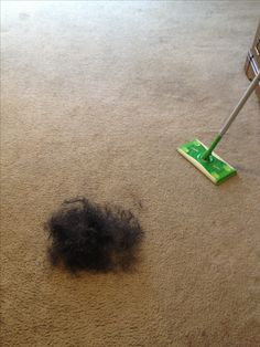 Use Swiffer to remove pet hair from your carpet! I got this idea from another pin that mentioned using a squeegee to remove hair from carpet. This was quick and worked like a charm. Can be used pre-vacuum if you don't want to risk a bad clog in your vacuum line. All you need is the Swiffer - no pads or cloths.