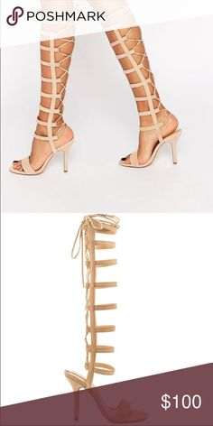 Lace up heel Nude lace up gladiator heel , NEVER worn . Aldo Shoes Heels
