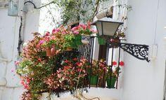 Old Town, Marbella - Things to Do - VirtualTourist