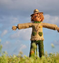 Scarecrows For Garden, Make A Scarecrow, Fancy Dress For Kids, Aztec Art, Country Farm, Fall Harvest, Yard Art, Fall Crafts, Oeuvre D'art