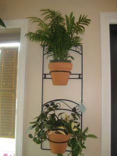 Wrought Iron planter sconce