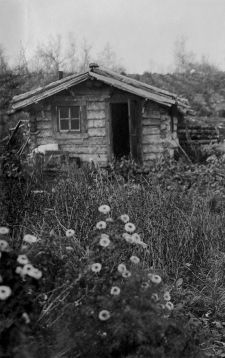 Old Homestead Cabin ~ Alaska | Alaska ~The Last Frontier ...
