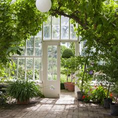 This inside view of a roomy greenhouse shows how you can use the space in a larger greenhouse. The ceiling on this greenhouse high enough to even fit trees. Lean To Greenhouse, Homemade Greenhouse, Dome Greenhouse, Outdoor Greenhouse, Cheap Greenhouse, Greenhouse Effect, Greenhouse Wedding, Greenhouse Plans, Pallet Greenhouse