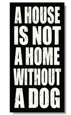 My favorite dog quote! My home is filled with 4 beautiful dogs that bring me lots of joy!