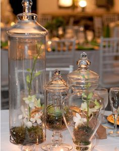3 different size and shape vases saves money on flowers