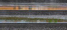 Pancras-Plaza-Kings_Cross-London-12-copyright-Townshend-Landscape-Architects « Landscape Architecture Works   Landezine
